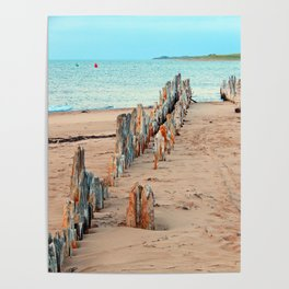 Wharf Remains on the Beach Poster