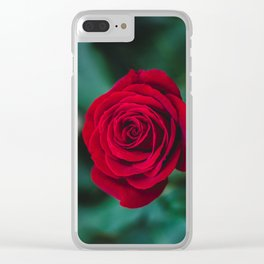Romantic Red Rose Clear iPhone Case