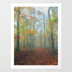 Find Your Path Art Print