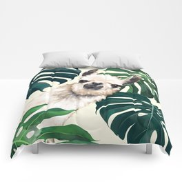 Sneaky Llama with Monstera Comforters