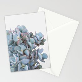 Blue Cactus Stationery Cards