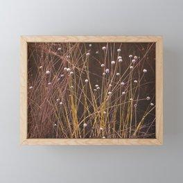 Silver buttons Framed Mini Art Print