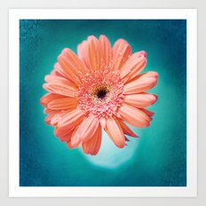 orange gerbera daisy Art Print