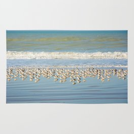 Birds, reflections in water Rug