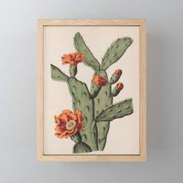 Botanical Cactus Framed Mini Art Print