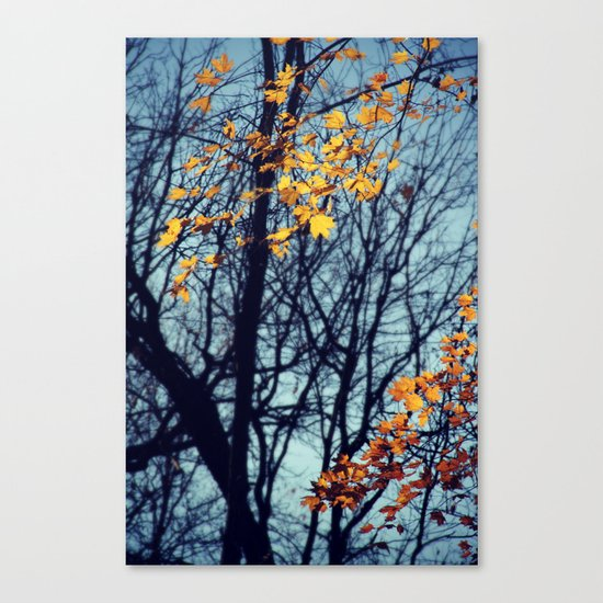 Light Up Canvas Print