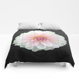 LONELY DAHLIA Comforters