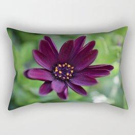 Purple Osteospermum Flower (Marco Close-Up) Rectangular Pillow
