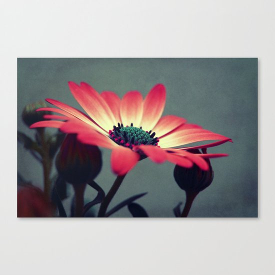 Look for your middle Canvas Print