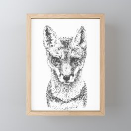 Young Fox Framed Mini Art Print