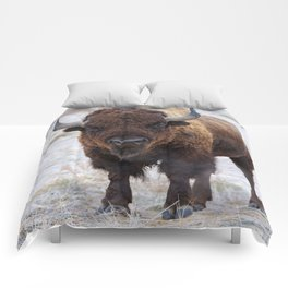 In The Presence Of Bison #society6 #decor #bison by Lena Owens @OLena Art Comforters