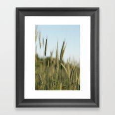 A rich crop Framed Art Print