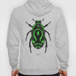 Fiddler Beetle Hoody