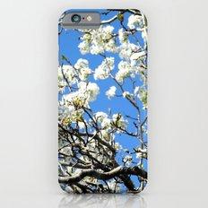 Dogwood in the sky Slim Case iPhone 6s