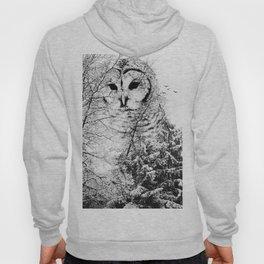 Winter Owl Hoody