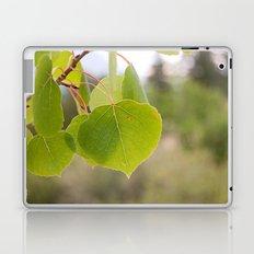 Aspen Green Laptop & iPad Skin