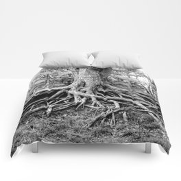 Tree of Life and Limb Comforters