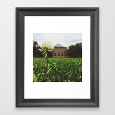 Summer Sunshine Framed Art Print