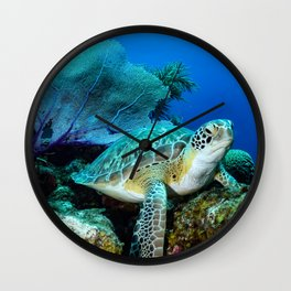 Turtle on the Reef Wall Clock