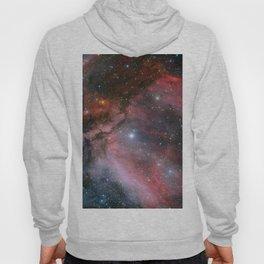 Carina Nebula Space Art Hoody