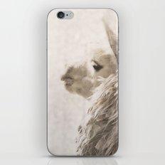 Magical White Alpaca iPhone & iPod Skin