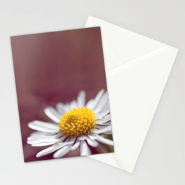 Daisy small flower macro with purple background copy space Stationery Cards
