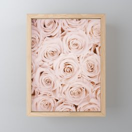 Blush Pink Roses Framed Mini Art Print