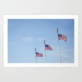 Flags over DC Art Print