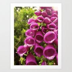 Pink Bells (5) Art Print