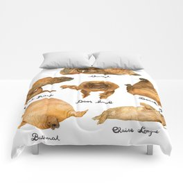the furnished walrus Comforters