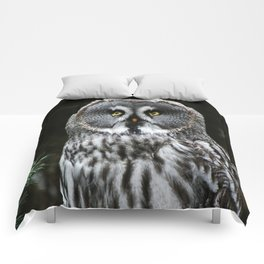 The Great Grey Owl Comforters