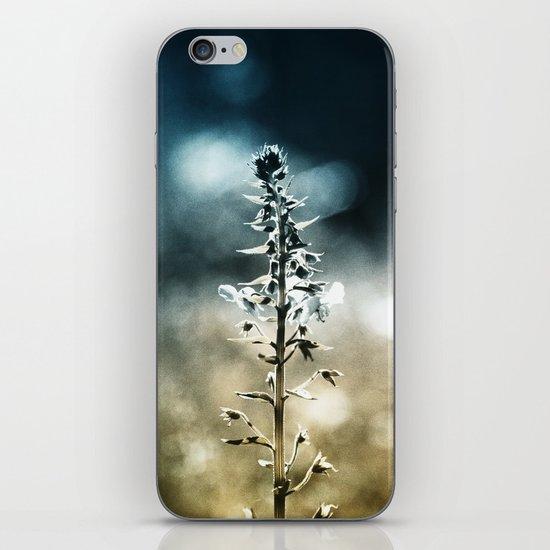 Ametrin iPhone & iPod Skin