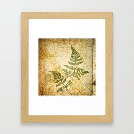 Of The Woods Framed Art Print