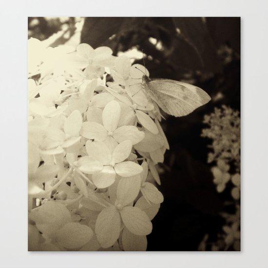 Petal Wings Canvas Print
