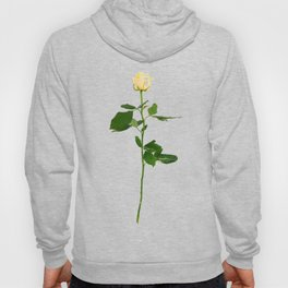 Yellow Rose (Color) Hoody