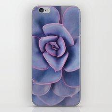 Purple Pearl iPhone & iPod Skin