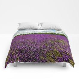 Lavender Landscape (Version 1)  Comforters