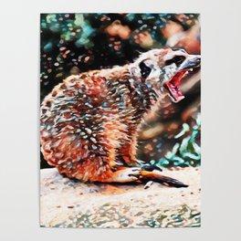 Meerkat Rage | Painting Poster