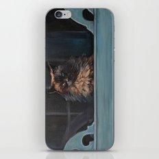 Ragdoll Cat Blue Eyes Inside (screen door with gingerbread)  iPhone & iPod Skin