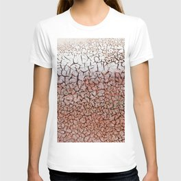Weathered Paint T-shirt