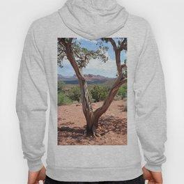 Arizona Horizon - Sedona Red Rocks Hoody