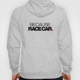 BECAUSE RACE CAR v1 HQvector Hoody