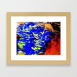 Elkhorn Framed Art Print