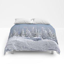 Winter season Comforters