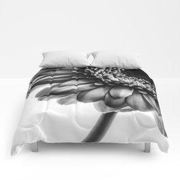 Gerbera 1 Comforters