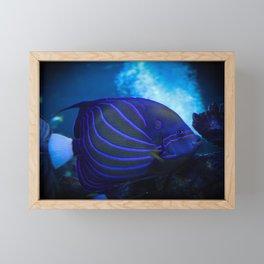 underwater blue Framed Mini Art Print