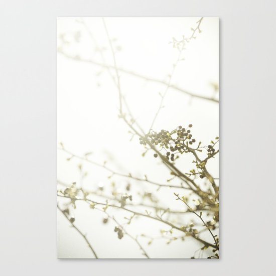 {OUTSTRETCH} Canvas Print