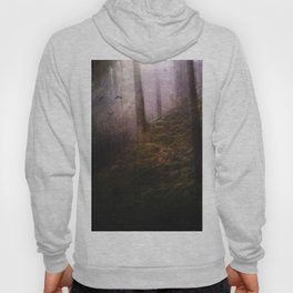 Travelling darkness Hoody