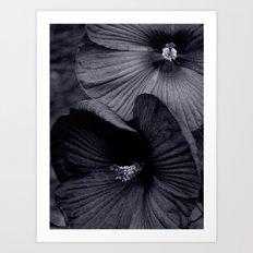 Elegant Pair of Hibiscus Flowers in Deepest Aubergine Monotone Monochrome Art Print