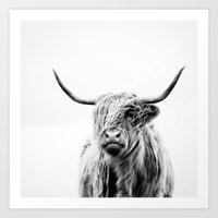 Art Prints featuring portrait of a highland cow by Dorit Fuhg